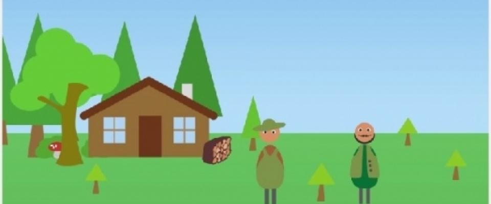 Klimatski efekti bioenergije i održivog šumarstva i snaga drveta